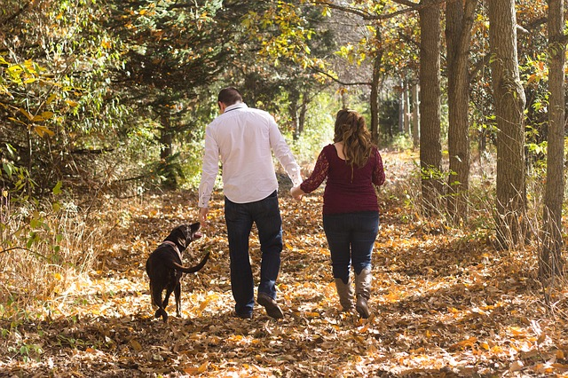 Get Exercise Walking Your Dog