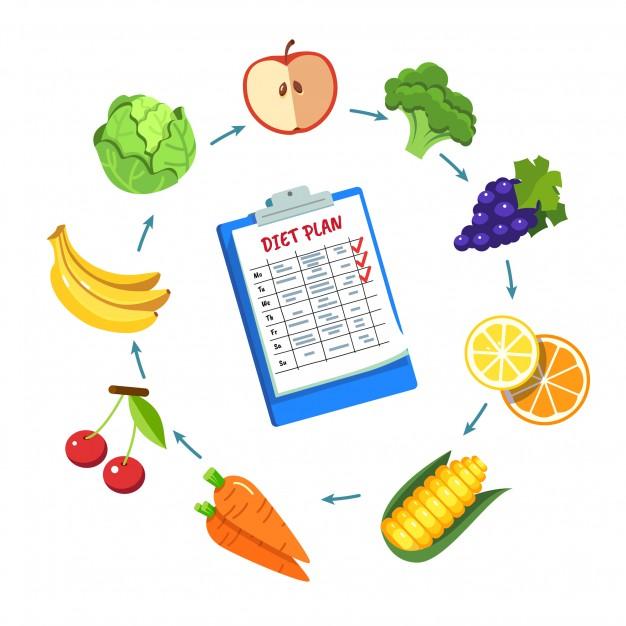 Majority of Diet Plans are Only Focused on Macronutrients