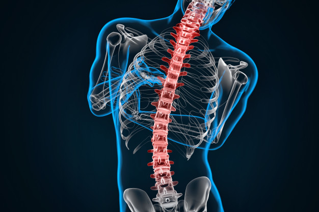 Scoliosis Symptoms and Chiropractic Treatment